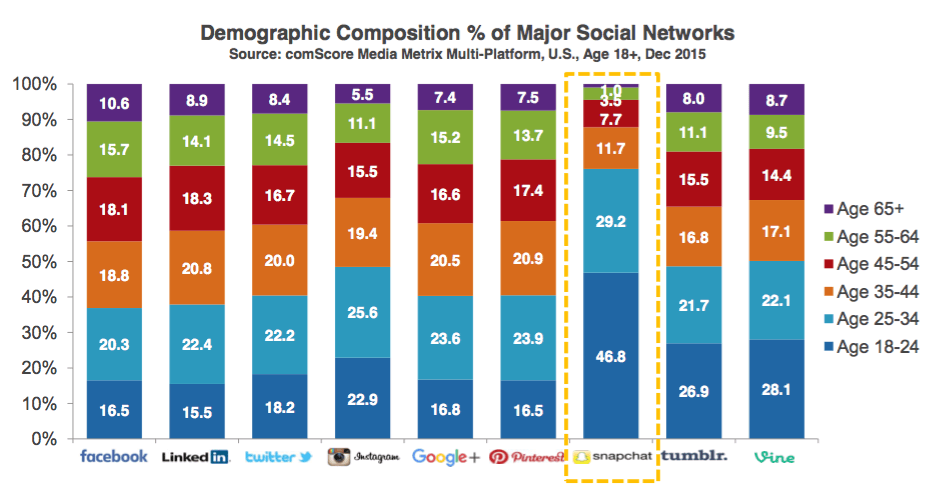 demographics of social media users
